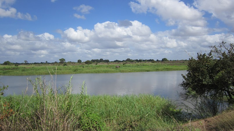 A tributary of the Rufiji