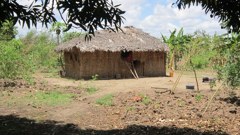 A typical  farming family's house in Chumbi